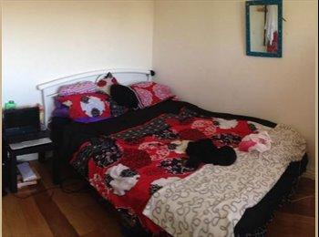 double room too rent