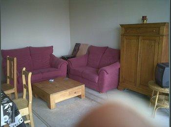 Appartager BE - grand appartement en colocation - Anderlecht, Bruxelles-Brussel - €390