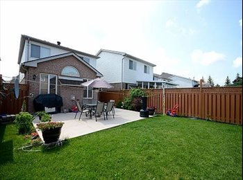 EasyRoommate CA - Brand New Basement On Bovaird and bramalea - Mississauga, South West Ontario - $750