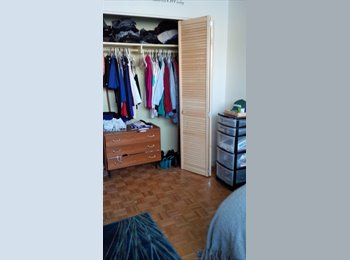 EasyRoommate CA - Sixth roommate wanted near algonquin  - Other Ottawa, Ottawa - $550