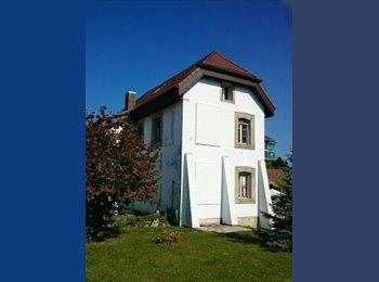 EasyWG CH - Chambre à louer - La Chaux-de-Fonds, Neuchâtel / Neuenburg - CHF450