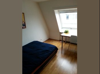 WG Zimmer in grosser 3.5 Zimmer Wohnung