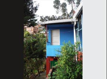 alquilo Cuartos / Camas / apartamento