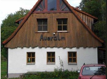 EasyWG DE - Haus mit 4 Zimmerwohnung und 2 Appartements - Bayreuth, Bayreuth - €270