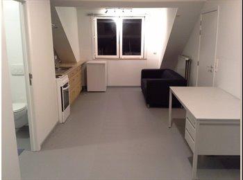 EasyKot EK - Ruime studentenstudio op zolderverdieping - Runkst, Hasselt - €450