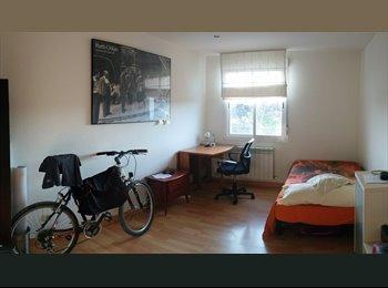 Compartir piso / flatmate / collocataire