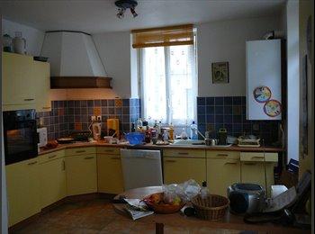 Appartager FR - maison en colocation pour etudiant ou jeune salarié calme et spacieuse proche bus  commerce - Reims, Reims - €400