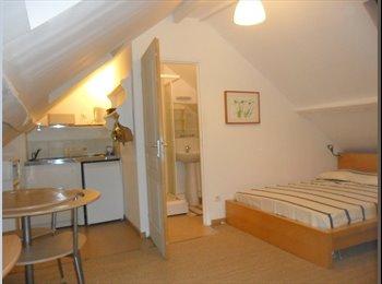 Chambre meublée Lille 380 €