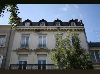 Appartager FR - 2 Chambres meublées à louer! - Angers, Angers - €300