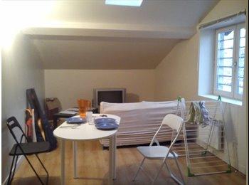 Une chambre dispo à partir du 22 Février dans un T3 place...