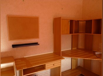 colocation chambre meublée