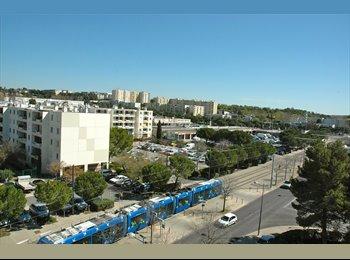 Colocation au pied du Tram1 arrêt ST Paul1
