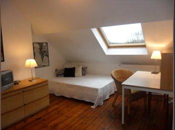 chambres meublées Lille