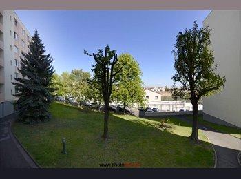 Appartager FR - Cherche Coloc pour nouvel appart - Clermont-Ferrand, Clermont-Ferrand - €275