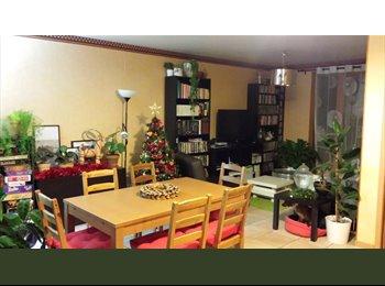 Appartager FR - Maison T4, Saint-Simon, Toulouse sud, grand jardin - Toulouse, Toulouse - €330