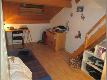 Appartager FR - chambre spacieuse 2 pas du métro villejuif - Villejuif, Paris - Ile De France - €500