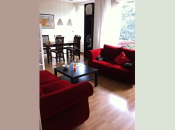 120M2 Fully furnished appartment,  1 room free