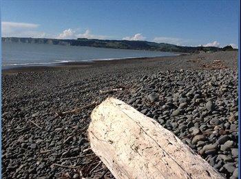 NZ - Beautiful beach house - Haumoana, Napier-Hastings - $140