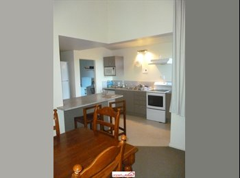 NZ - Single and Double Studio Rooms Available! - Dunedin Central, Dunedin - $165