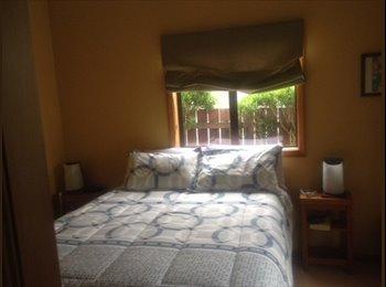 NZ - Beautiful! Fun and fully furnished home!  - Kaikorai, Dunedin - $116