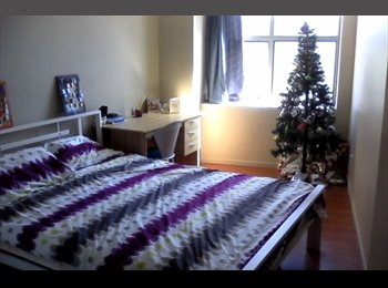 NZ - Room for rent in Auckland CBD **$250** pw - Auckland Central, Auckland - $250