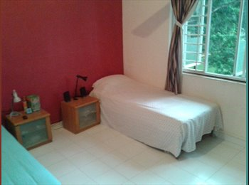 EasyRoommate SG - Room share - April 2015 - Quiet area - nature - Little India, Singapore - $600