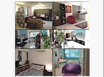 EasyRoommate SG - Clean fully furnished rooms availble in dec! - Tanglin Road, Singapore - $1100
