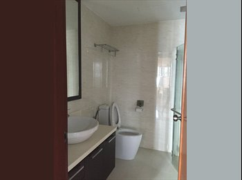 EasyRoommate SG - Common Room new HDB flat - No Agent Fee!!!! - Toa Payoh, Singapore - $1000
