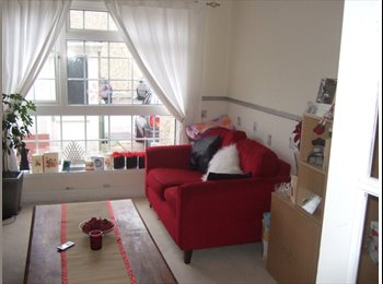A lovely room available in a mature houseshare