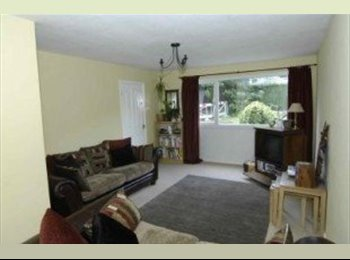 EasyRoommate UK - Single room - Wellingborough - Wellingborough, Wellingborough - £300