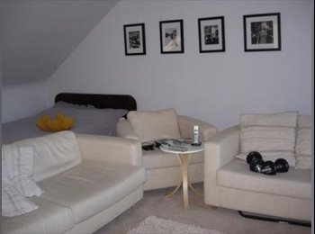 EasyRoommate UK - WANTED Professional, double bedroom - Exeter, Exeter - £550