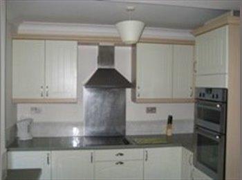 Clean tidy house Harefield, all bills inc