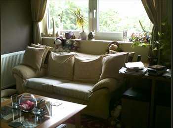 LODGER REQUIRED FOR LOVELY HOUSE