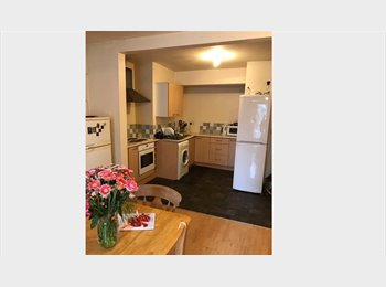 SINGLE ROOM TO LET IN HALL GREEN