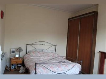 One large room in Victorian house in Tooting Bec
