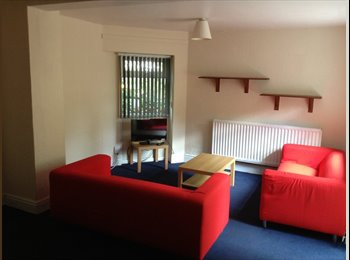 EasyRoommate UK - Double room all bills included - Radford, Coventry - £370