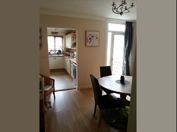 Professional wanted to rent double room, Southsea