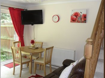 Double room available in just been renovated house
