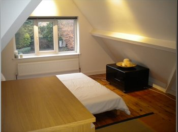 EasyRoommate UK - Lovely Room, Detached House, Glenfield, Leicester - Glenfield, Leicester - £410