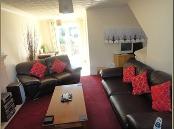 EasyRoommate UK - MASSIVE  DOUBLE ROOM WITH EN SUITE - Bridgend, Bridgend - £320