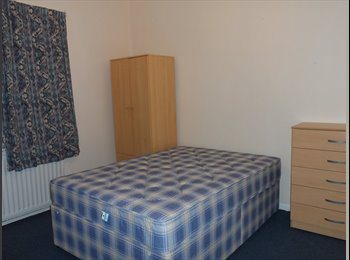 1 room to let near the solent university