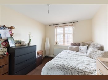 EasyRoommate UK - Modern 4/5 bed property in Edgbaston/Bearwood. - Edgbaston, Birmingham - £380
