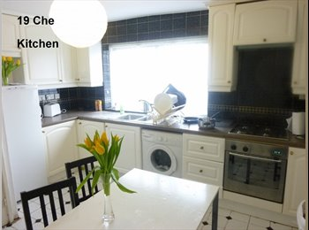 Double room lovely house - 6 MIN ACTON TOWN TUBE