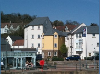 EasyRoommate UK - Room in Portishead shared house - nice location - Portishead, Bristol - £412
