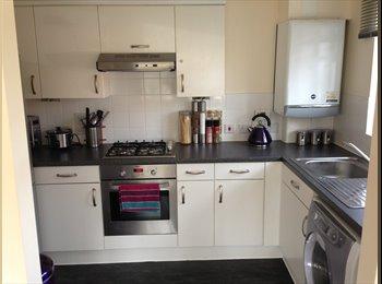 EasyRoommate UK - Double room seeking nice flatmate! - Newbury, Newbury - £450