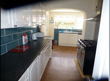4 Double Rooms for Rent - Newly Re-Furbished