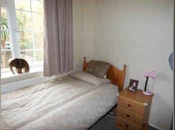 EasyRoommate UK - very clean & happy house,, - Fishponds, Bristol - £360