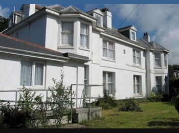 Rooms to let in Derriford, Plymouth