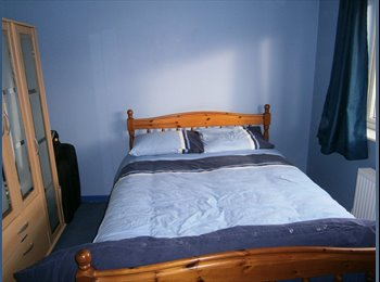 Spacious Bedroom to rent for Professionals