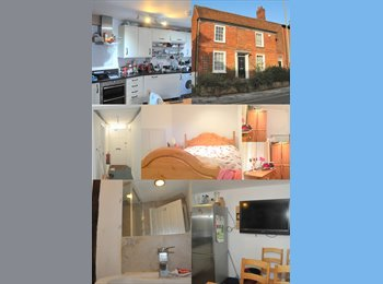 EasyRoommate UK - Newly refurb Character Tudor Property Town Centre - Basingstoke, Basingstoke and Deane - £400